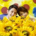 ひまわりR Sサイズ【ブーケ&デコレーション】Giant Flower 20cm