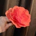 ジャイアントフラワー手作りキット エフフラワーM【花径約30cm】