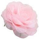 パステルローズL ピンク Giant Flower 花径約45cm
