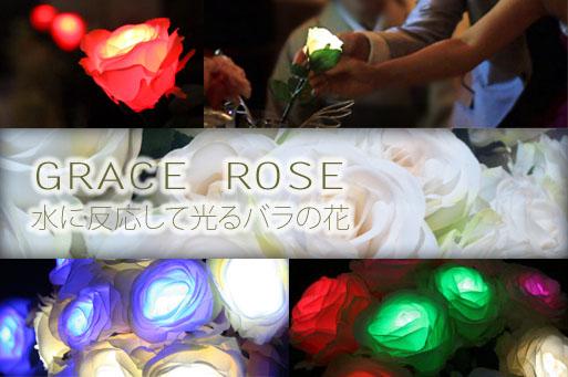 結婚式の演出ならw,style top GRACE ROSE 水に反応して