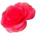 ジャイアントフラワー手作りキット ローズ【花径約30cm ウェディング 誕生日 パーティーグッズ 】