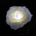 TWINKLE ROSE(トゥインクルローズ):ホワイト 水に反応して光るバラの花