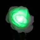 TWINKLE ROSE(トゥインクルローズ):グリーン 水に反応して光るバラの花