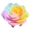 パステルローズL レインボー Giant Flower 花径約45cm