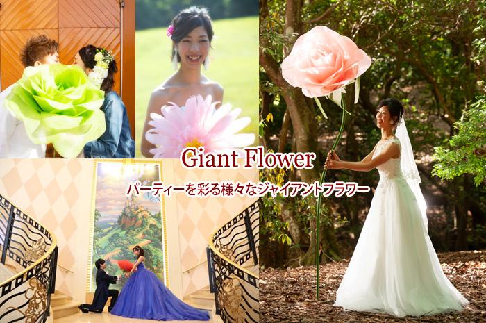 Giant Flower ジャイアントフラワー